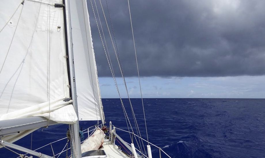 Langturssejlere, der sejler fra New Zealand, skal fremover overholde endnu flere regler. Foto: Signe Storr
