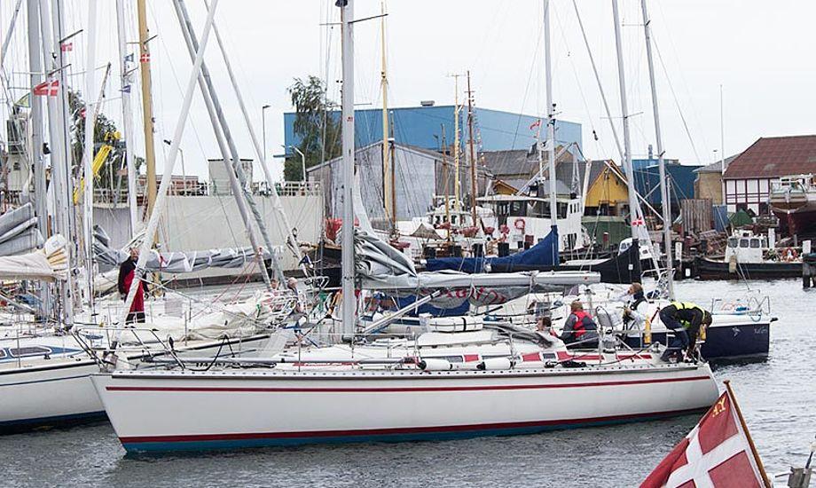 Her er Signe Stoor ved at finde en ledig plads i en overfyldt Svendborg Havn til Silverrudder 2015. Foto: Katrine Bertelsen