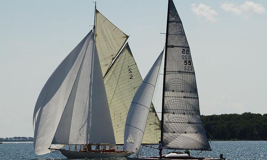 Sidste år var kun 20 træbåde at finde på startlinjen. Foto: Anders Lund