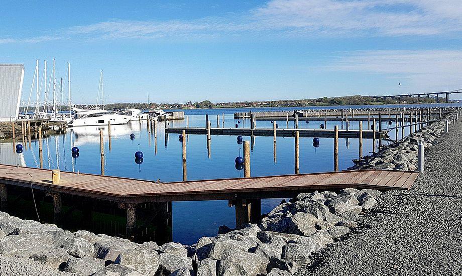 Den nye havn kommer til at ligge ved siden af havnen, der er ved Kulturøen. Foto: Troels Lykke