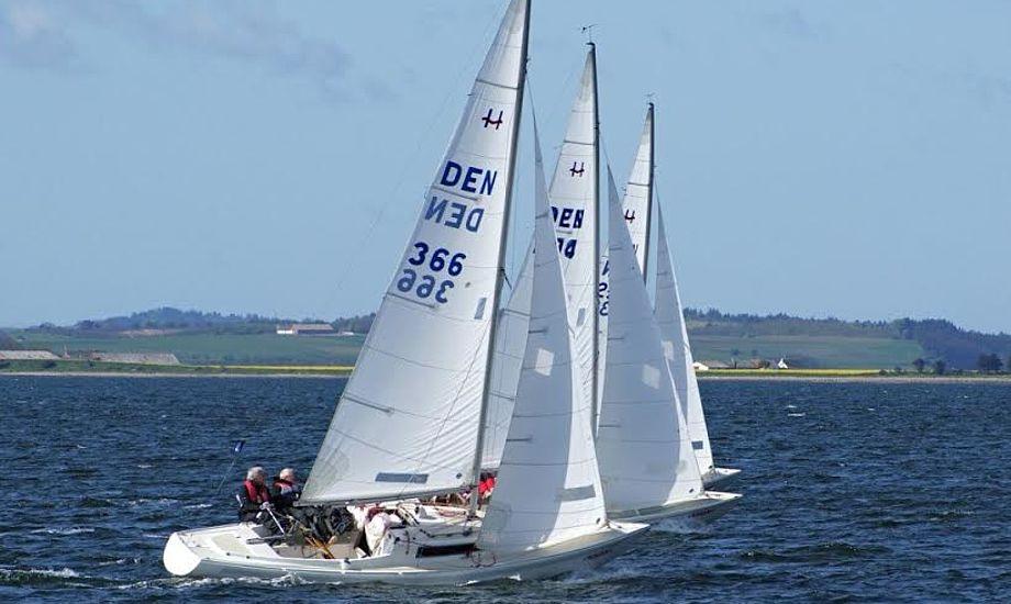 25 besætninger fra mere end 12 forskellige sejlklubber deltager indtil videre i stævnet. Foto: Ole Vognstoft