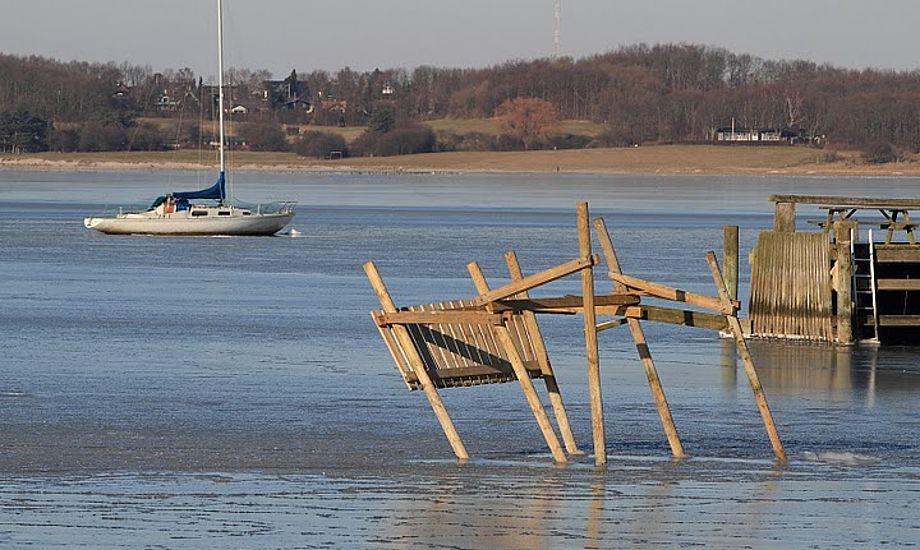 Roskilde Havn med ødelagte pæle. Foto: Søren Svarre, sejlfoto.dk