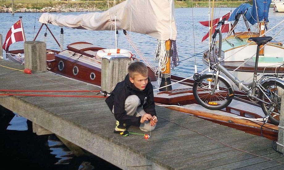 August til DFÆL-træf i Ebeltoft. Den 11-årige dreng kan nu blive 5. generation af bådebyggere. Foto: Jørgen Jensen