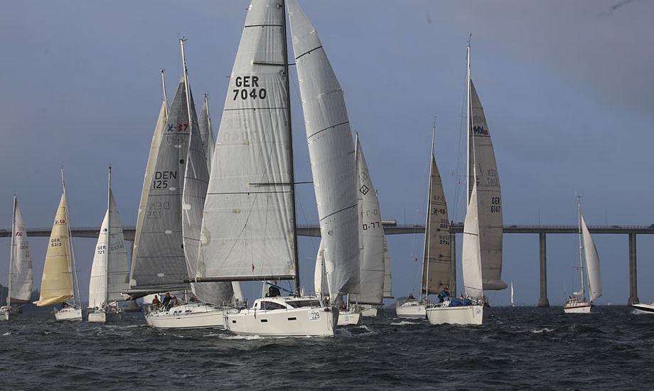På blot to dage havde 100 sejlere tilmeldt sig dette års Silverrudder. Her billede fra 2015-udgaven. Foto: Troels Lykke