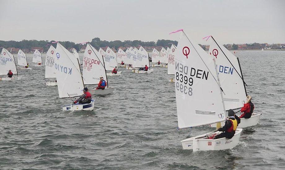Særligt Optimist-sejlerne fyldte god på vandet ud for Kerteminde. Foto: Anders Lund Foto