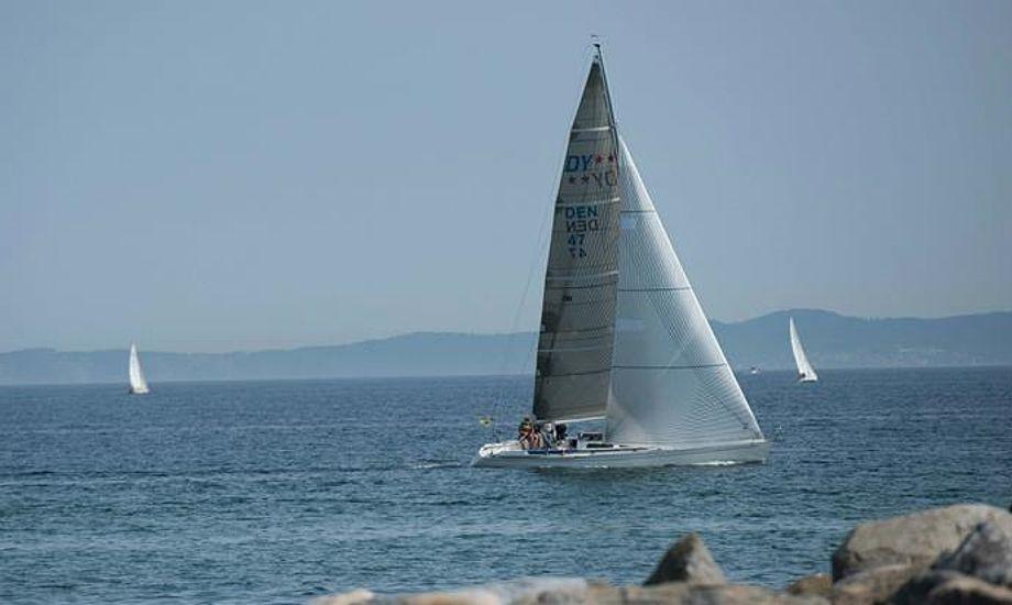 24 både deltog i årets Gilleleje Cup. Foto: facebook.com/gillelejecup