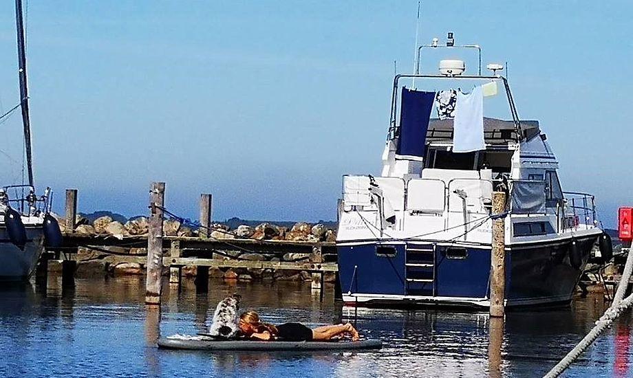 I Rudkøbing Havn var der også propfyldt forleden, da motorbaadsnyt.dk var på tur. Foto: Troels Lykke