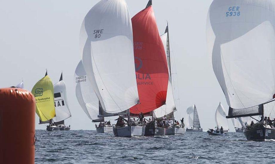 Det passer Club Maritim 09 fint at regeringen vil hæve afgiften for de danske sejlere, så får jeg klubben flere kunder, siger Gerhard Kristensen. Foto: Troels Lykke