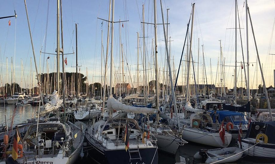 I Ballen er også flere svenske, tyske, norske og hollandske sejlere, der ofte kommer i flotte både. Foto: Michael Tonsberg