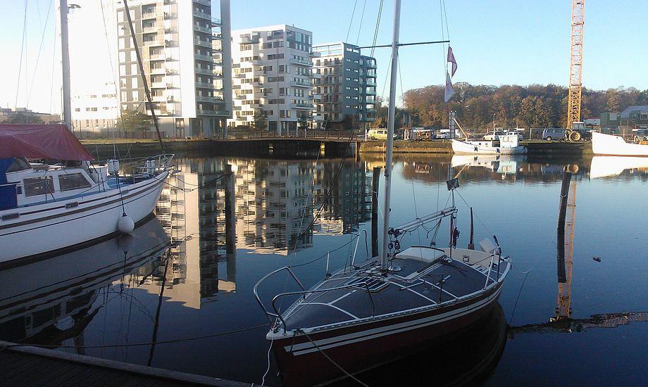 Der er god plads i Odense havn for tiden. Foto: Troels Lykke