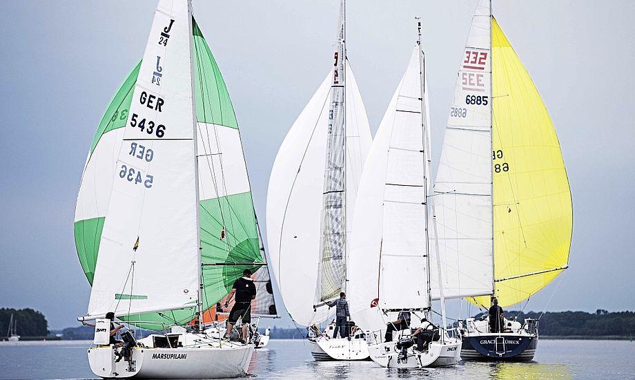 16 både sejlede sidste år med i den første Vegvisir Race. Foto: Vegvisir Race