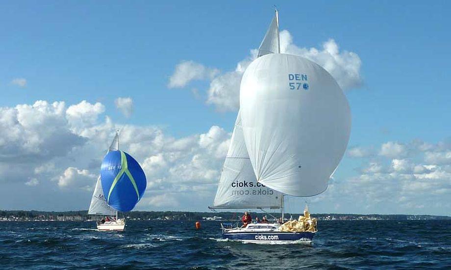 DS fik klø på seneste generalforsamling, for ikke at være i øjenhøjde med sejlsporten. Foto: Katrine Bertelsen