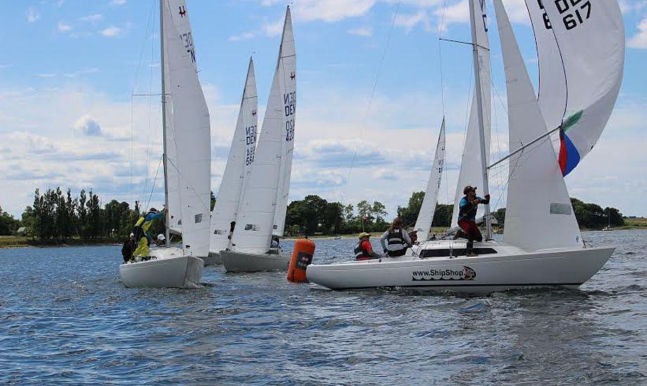 Anders Bertelsen fra Aarhus Sejlklub førte efter lørdagens sejladser, men rykkede to pladser ned da stævnet var slut. Foto: Sune Hinz