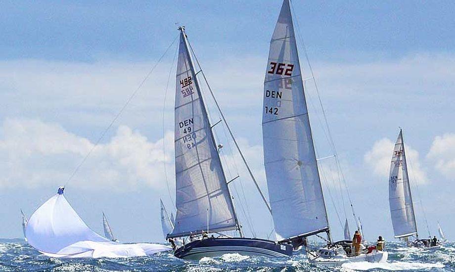 Som om det vilde vejr ikke var nok. Sejlerne skulle også have en særpræget oplevelse med fra Samsø.  Foto: aarhus2star.dk