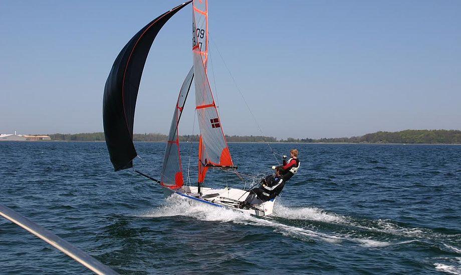 29eren er uhyre svær at sejle, fortæller landsholdstræner, Pierre Baad. Arkivfoto: Jens Haugaard