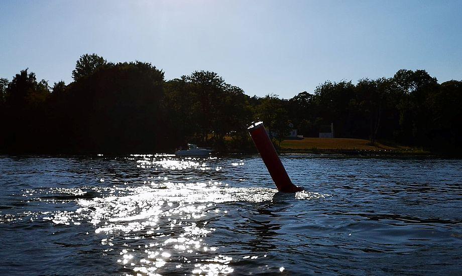 Over halvdelen af Danske Tursejleres både er hjemhørende i Sønderjylland, på Fyn og på Sjælland uden for hovedstaden. Og så er 2 ud af 3 sejlere over 50 år og 40 % er over 60 år. Foto: Troels Lykke