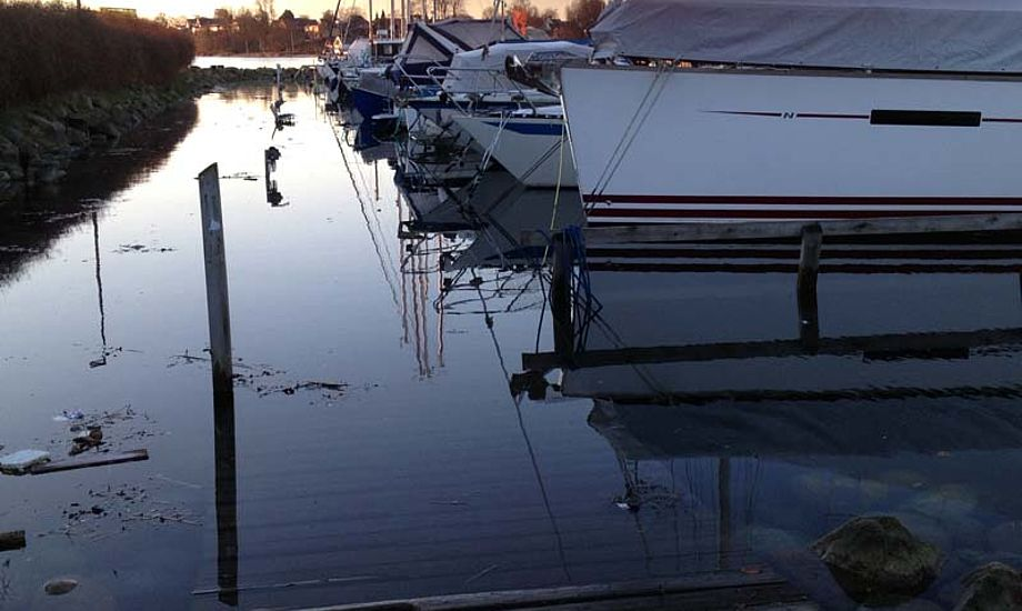 Fredericia havn fredag 6. januar, hvor broen er væk. Foto: Bo Hold