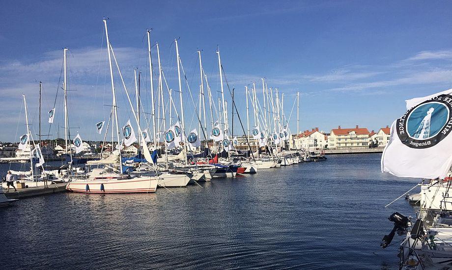 Initiativtagerne bag den svenske solosejlads er selv tidligere Silverrudder-deltagere. Her ses bådene inden starten i Marstrand. Foto: Jan Olesen