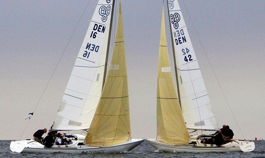 DS ønsker på klubkonferencen at sætte fokus på sejlerskolens betydning for nye sejlere. Foto: Dansk Sejlunion