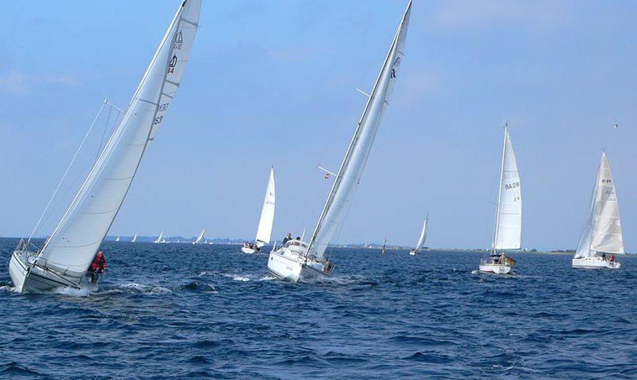 Skønt at sejle i det Sydfynske. Foto: Ib Oldrup