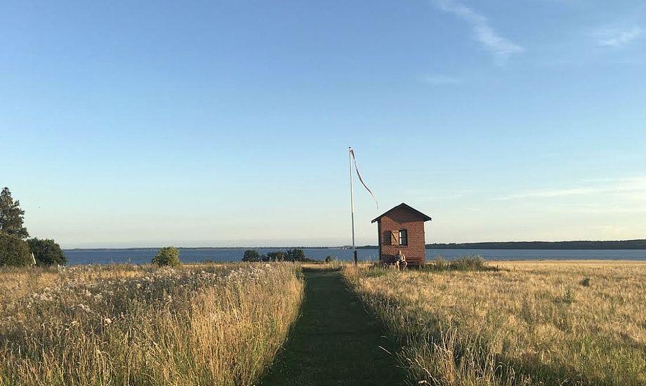 Øen Nyord byder på enestående naturoplevelser. Foto: Thomas Hyllested Pedersen