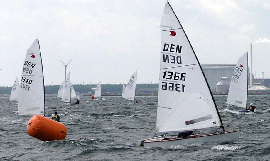 Ok-jolle sejlerne kan glæde sig til sol, men ikke så meget vind i Svendborg. Arkivfoto fra NM.
