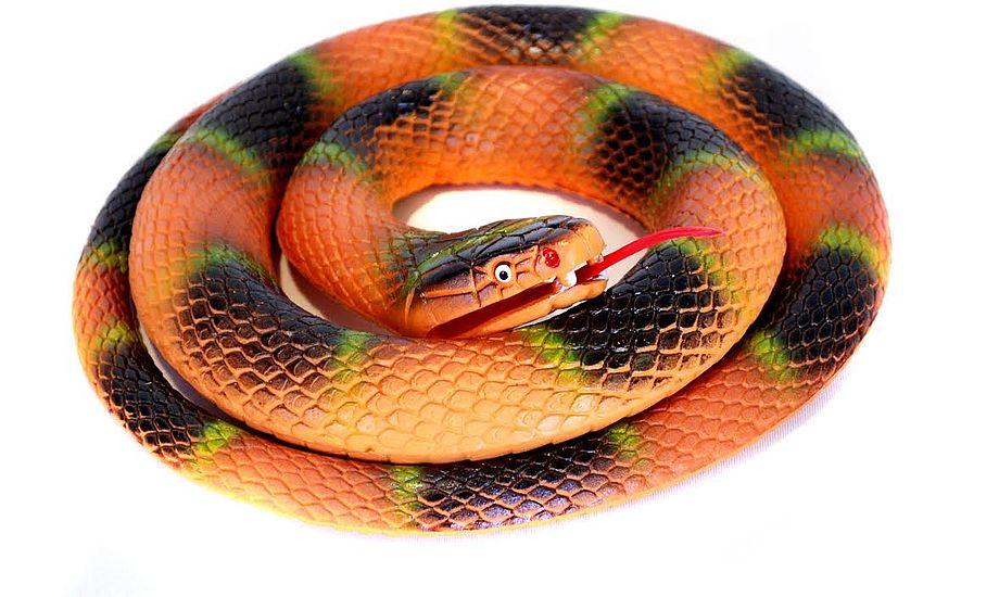Slangen kan købes for blot 75 kroner. Foto: Watski