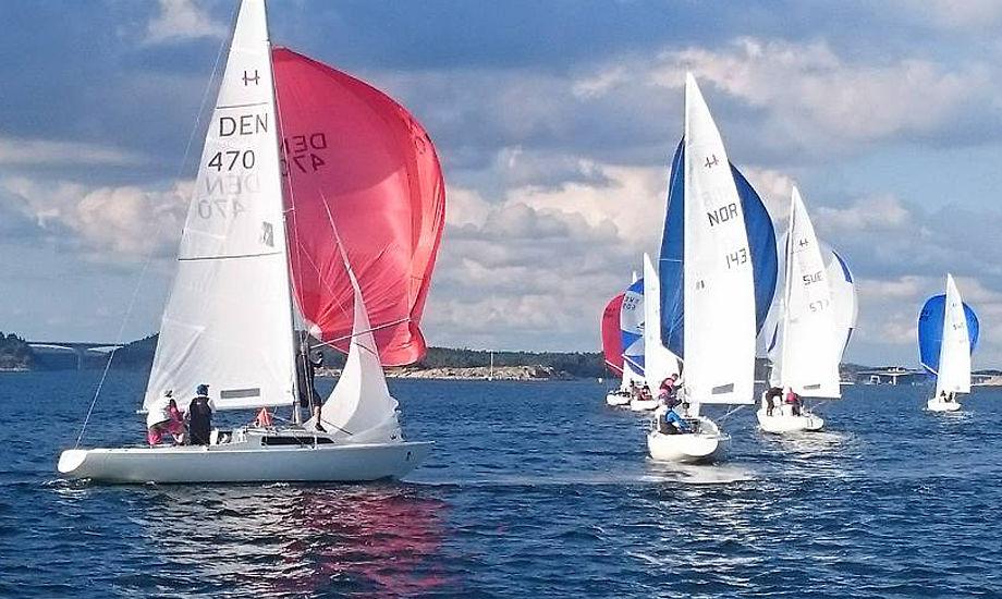 Team Korsgaard ses her lidt nede i feltet med rød spiler. Foto: Dennis Olsson