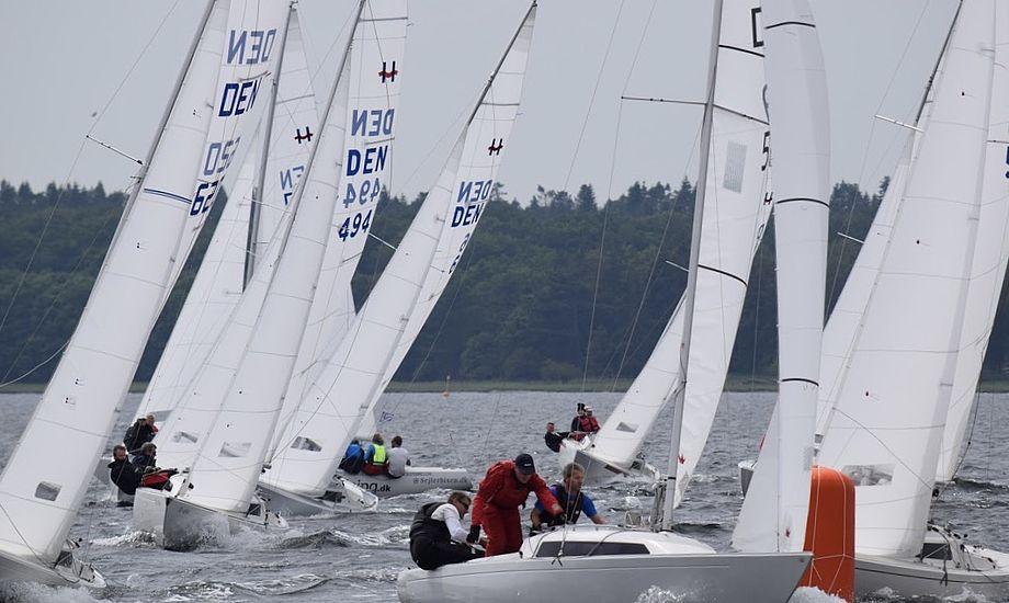 25 H-bådssejlere indtager i weekenden Køge Bugt. Foto: H-båds Ligaen