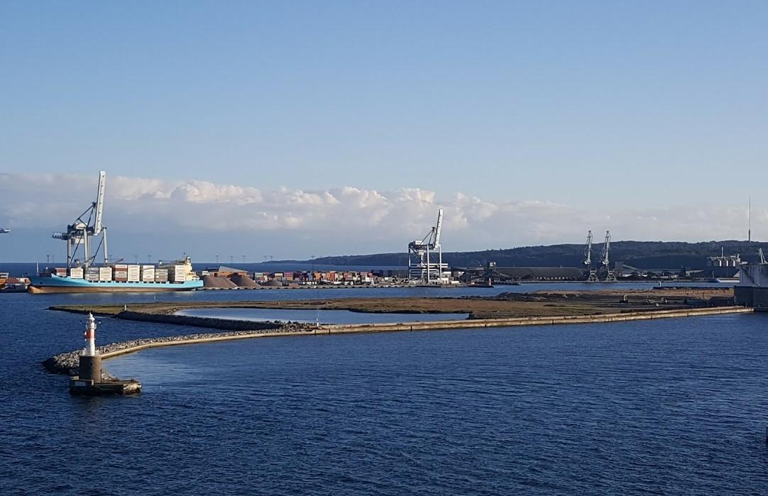 Alis Helene Madsen faldt i Aarhus Havn, men blev reddet. Foto: dr.dk.