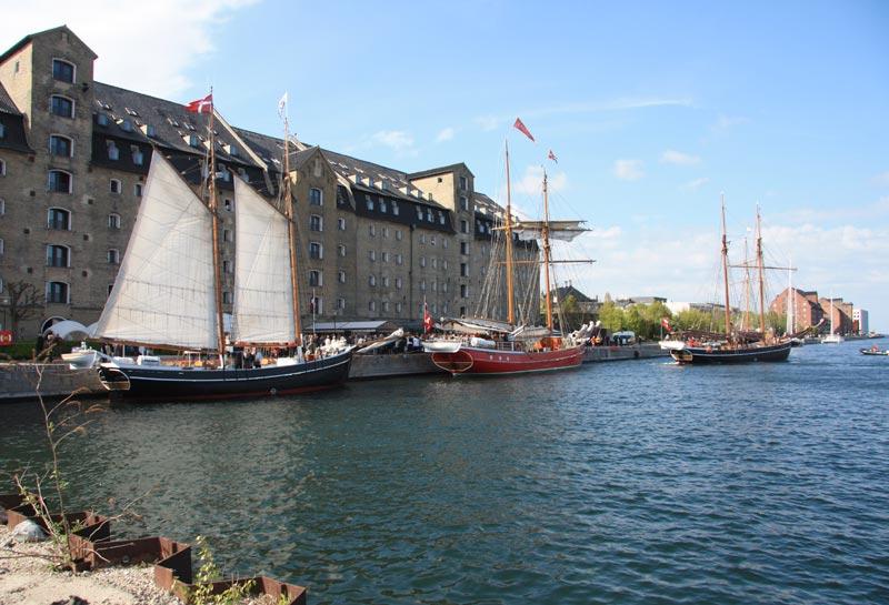 Tre smukke damer linet op ved Admiralkaj i København. Foto: De Forenede Sejlskibe