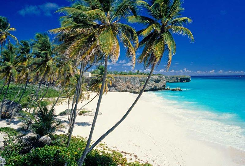 Barbados i Caribien. Det ser da meget godt ud! Foto: sap505worlds.com
