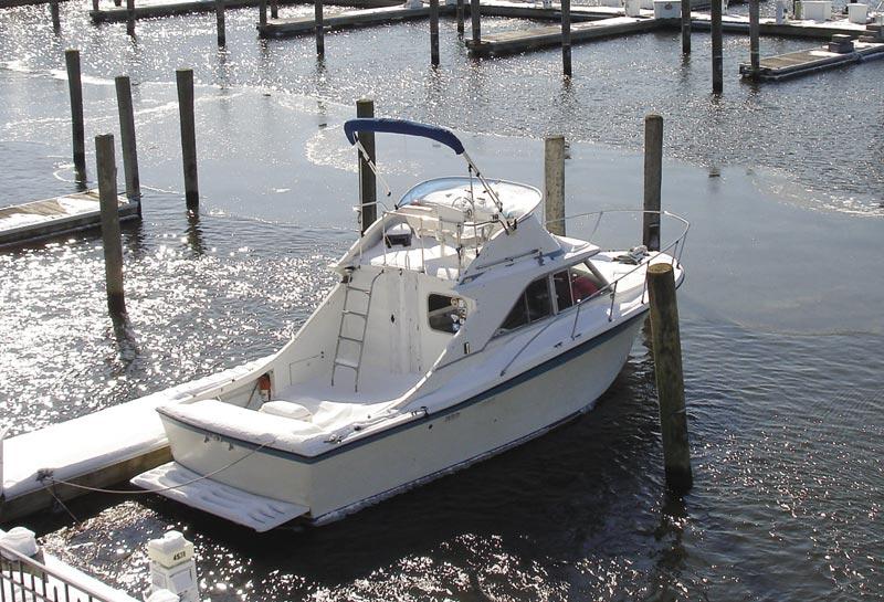 D-icer er designet til saltvandsmiljø og leveres med zink anode. Foto: Palby Marine