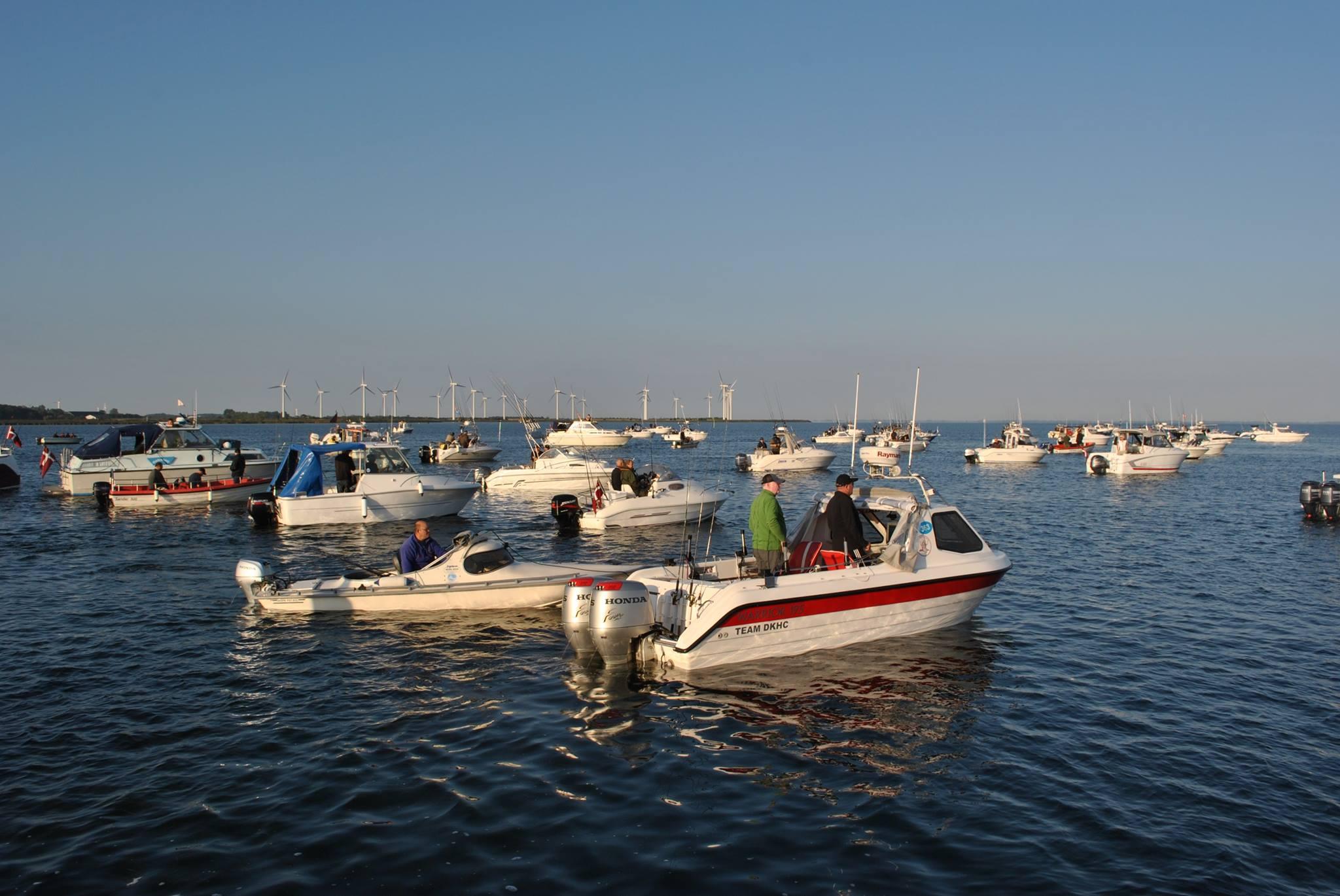 Det er 8. gang der afholdes DM i fladfisk. Foto: Peter Dan Petersen
